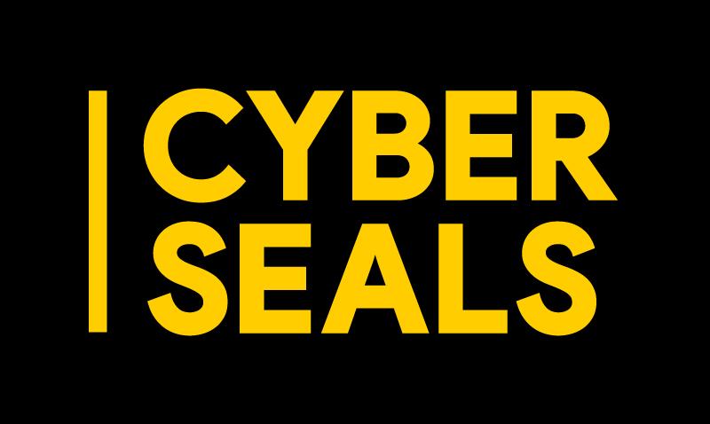 Bij Cyber Seals kraken we codes en lossen we puzzels op tot we de zwakke plek gevonden hebben